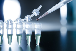 Amniotic Stem Cell Therapy Utilized In Orthopaedic Procedures